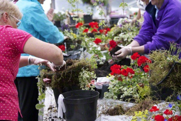How to make Hanging Baskets