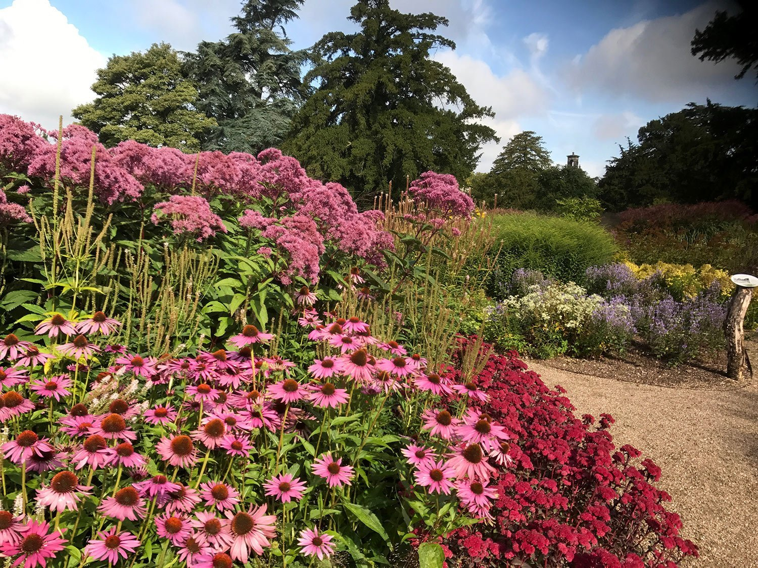 Prairie-style naturalistic planting, by Piet Ooudolf at Trentham Gardens