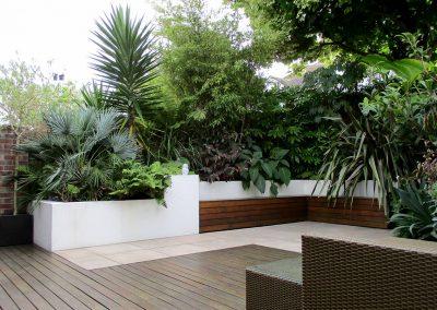 A Modern Tropical Garden