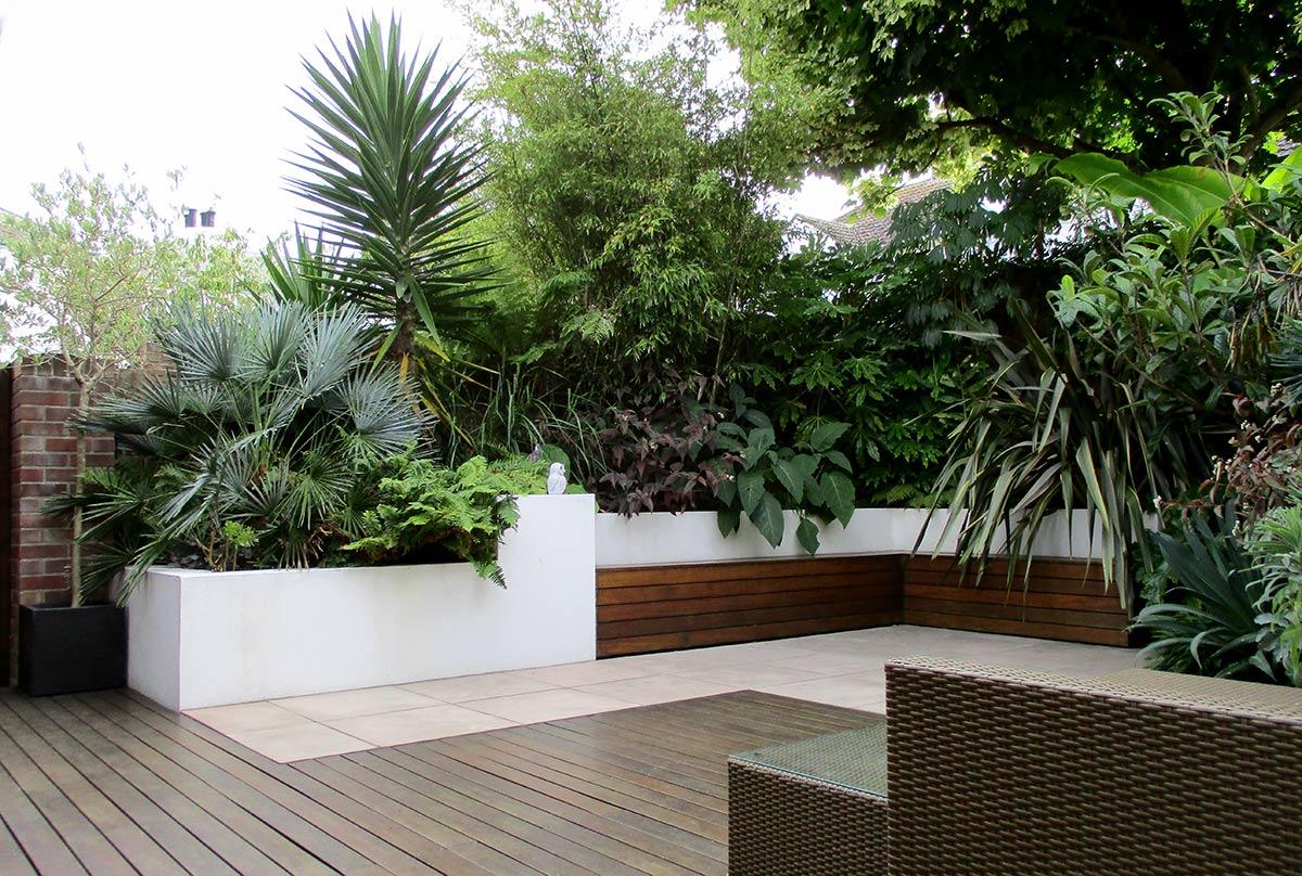 Garden Design by Post: a Modern Tropical Garden in Devon