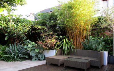 2021 Sees Huge Growth In Demand For Garden Design