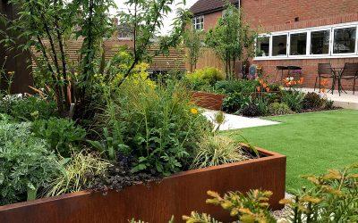 Time-Lapse Garden Transformation